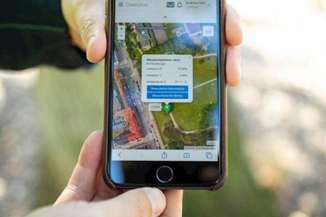 6. Šveđanima stižu SMS poruke od njihovih biljaka kad trebaju zalijevanje.