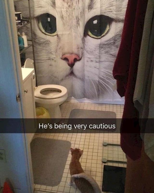 """14.""""Mačka nije htjela prestati obavljati nuždu u kadu, pa sam napravila ovo."""""""