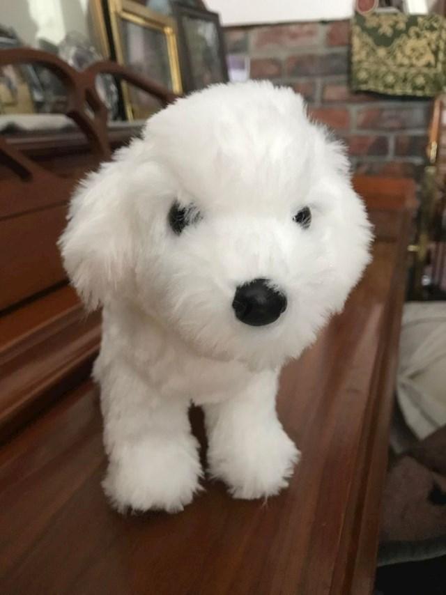 """""""Išla sam na operaciju i netko anoniman mi je poslao igračku koja izgleda isto kao moj pas."""""""