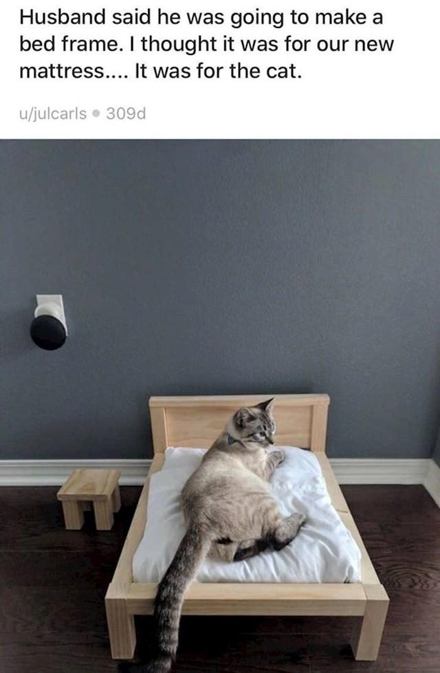 """1. """"Moj muž rekao je da će napraviti okvir za krevet. Mislila sam da će to biti za naš novi madrac...ali bio je za mačku."""""""