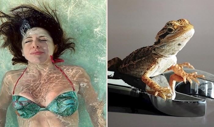 20 hiperrealističnih slika koje bi bez problema mogle proći kao fotografije