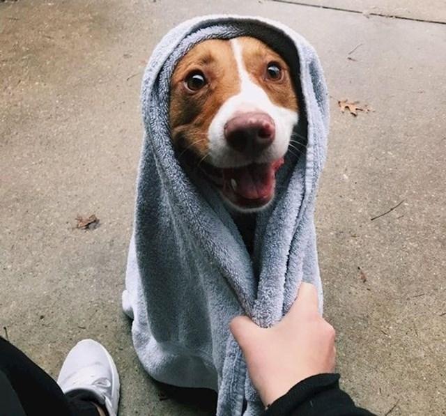 14. Obožava šetnje po kiši i kupanje nakon toga.