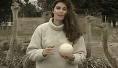 Ova djevojka požalila je što je uzela nojevo jaje u ruke