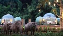 U ovom tajlanskom resortu možete spavati u prozirnim kupolama okruženi slonovima