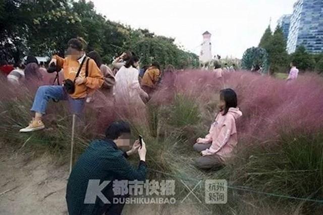 """#15 Turisti svojom """"selfie manijom"""" uništavaju rijetku ružičastu travu"""