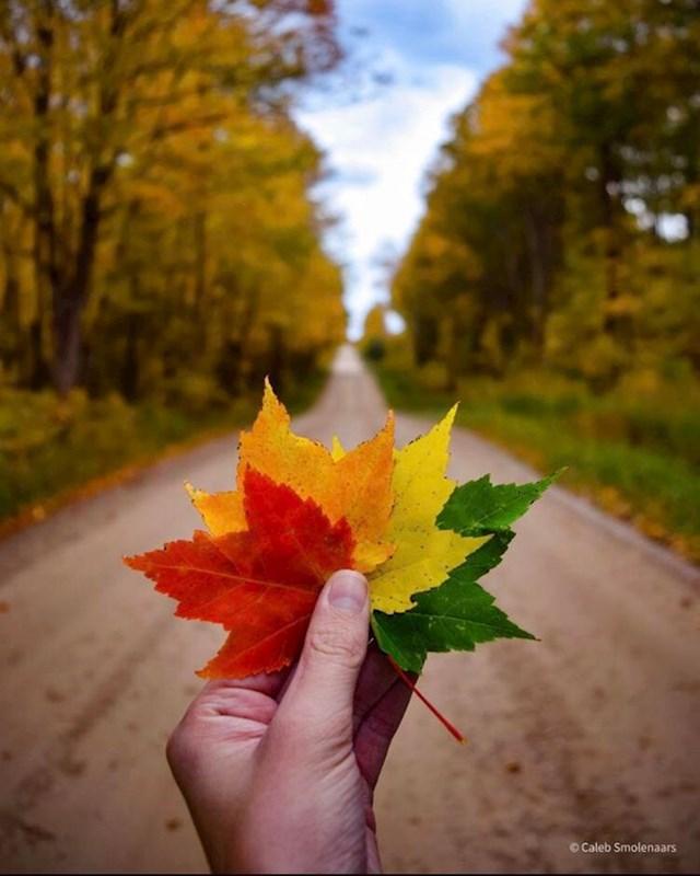 15. Jesen u Kanadi je priča za sebe.😍