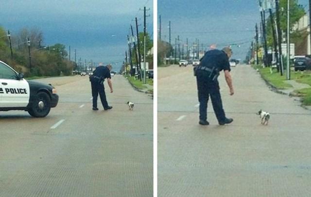 Ovaj policajac zaustavio je promet samo da spasi ovog mokrog i preplašenog psa.