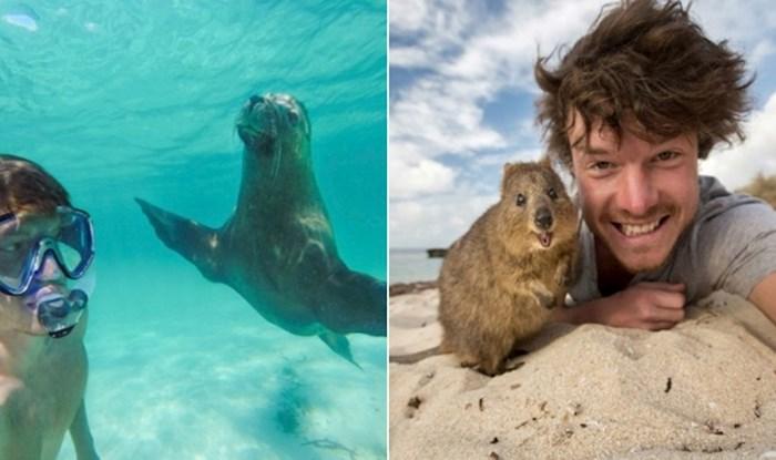 Tip se sprijatelji sa svakom životinjom koju upozna, rezultat je ova genijalna zbirka fotki