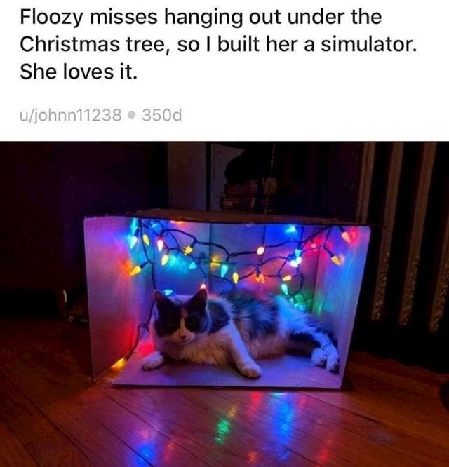 """6. """"Floozy je falilo opuštanje ispod božićnog drvca, pa sam joj napravila ovaj simulator koji obožava."""""""