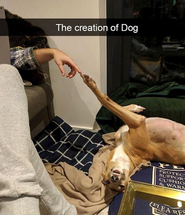 2. Podsjeća na Michelangelovo Stvaranje Adama. Bolje rečeno: Stvaranje psa!😆