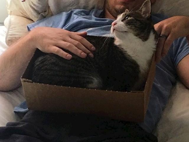 """1. """"Naša mačka više se voli maziti s mojom ženom. Pronašao sam rješenje."""""""