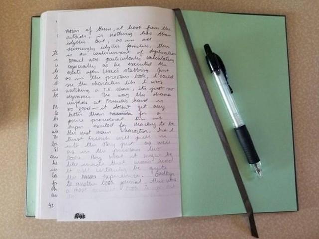 """2. """"Kemijska je ostala bez boje baš na posljednjoj rečenici posljednje stranice moga dnevnika!"""""""