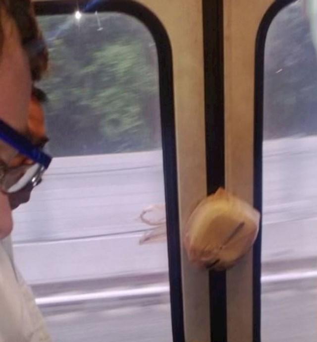 2. Tip čiji se ručak ukrcao na vlak bez njega.🤣