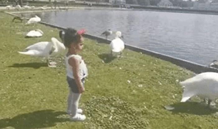 Ne možete se ne nasmijati ovoj simpatičnoj curici koja imitira labuda