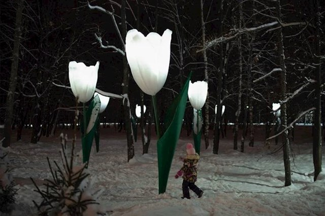 13. Ulične svjetiljke izgledaju kao Tulipani, Rusija