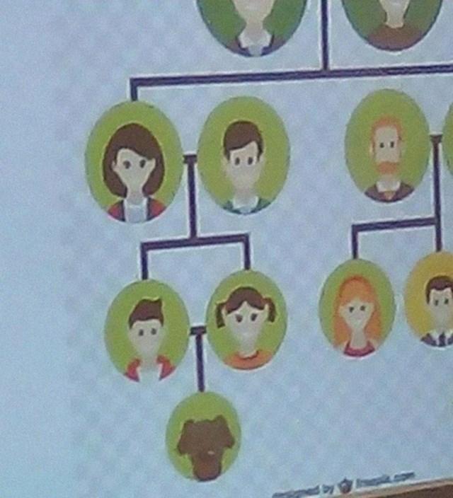 6. Obiteljska stabla ne funkcioniraju ovako...