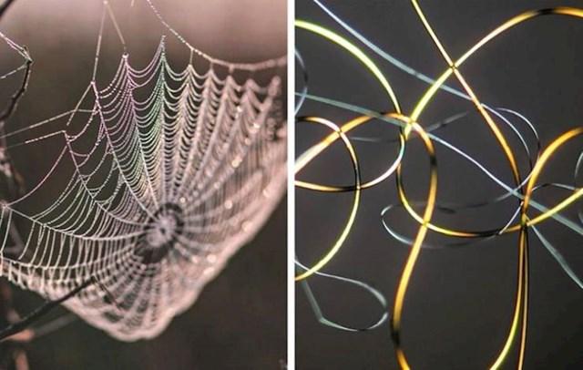 2. Paukova mreža