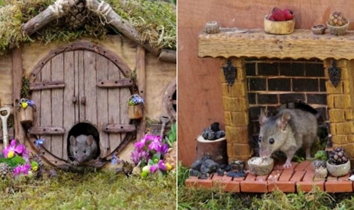 Čovjek je miševima koji su mu se nastanili u vrtu izgradio dom kao iz bajke i raznježio internet