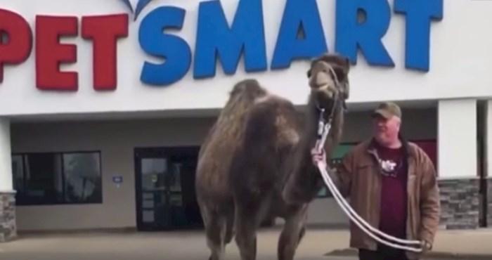 VIDEO Pogledajte prvu devu koja je imala čast razgledati trgovinu za životinje