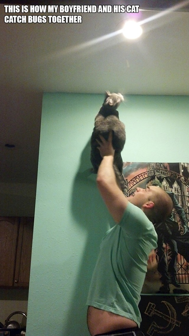 8. Moj dečko i mačka love kukce zajedničkim snagama.
