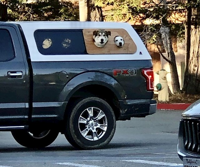 12. Kamionet potpuno prilagođen psima