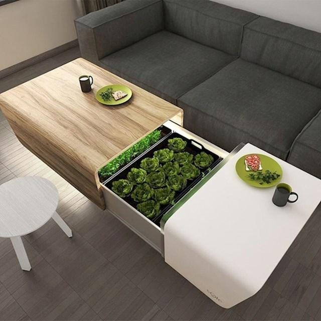 8. Stolić s mikro vrtom kojeg bi svatko poželio.