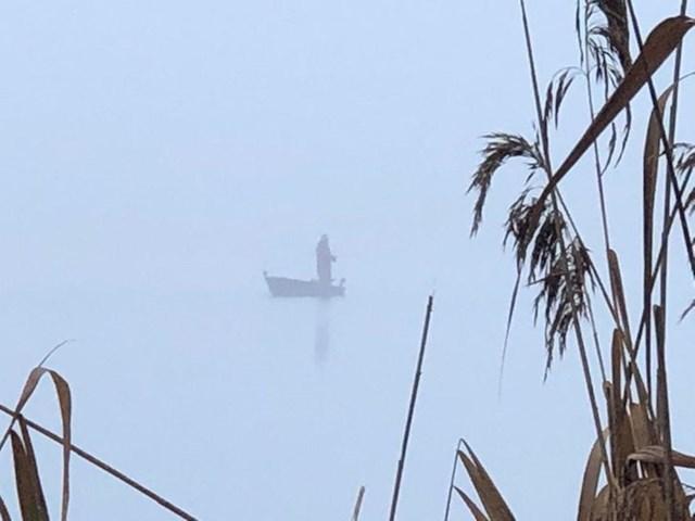 24. Pecanje po magli