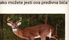 Netko se na Fejsu zapitao kako ljudi mogu jesti jelene, svi se smiju ovom urnebesnom odgovoru