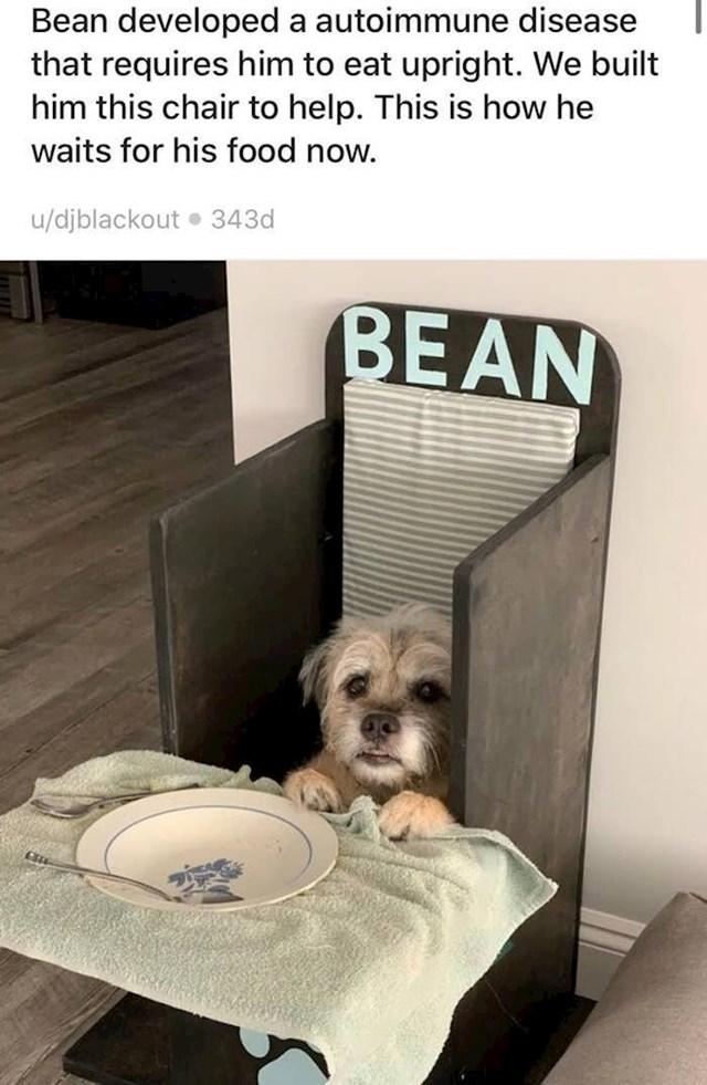 """2. """"Naš pas Bean obolio je od autoimune bolesti zbog koje mora jesti uspravan. Kako bismo mu olakšali, napravili smo ovu stolicu. I ovako od sada dobiva svaki svoj obrok."""""""
