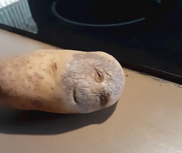 """15. """"Nisam bio siguran hoću li skuhati ovaj krumpir ili odvesti ga u bolnicu"""""""