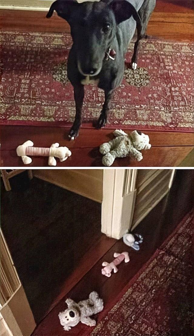 """""""Bila sam tužna i zatvorila se u sobu, a moj pas odlučio me oraspoložiti i posložio svoje igračke ispred vrata."""""""
