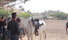 Spretna žena uspjela je zajahati konja na vrlo neobičan način