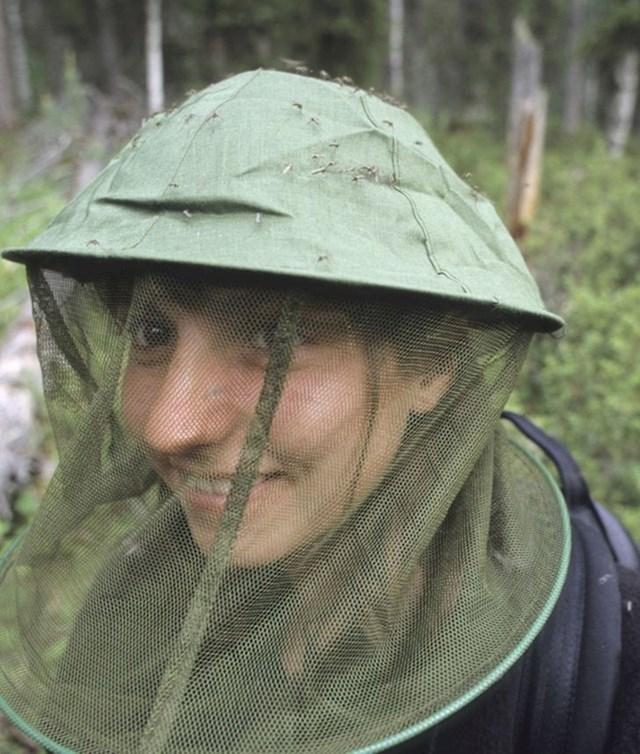 9. Finci se  natječu tko će ubiti najviše komaraca.