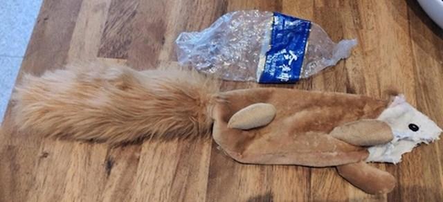 3. Plastična boca pronađena unutar igračke za psa.