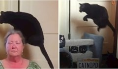 VIDEO Luda mačka se boji jednog dijela kuhinjskog poda i uvijek ga preskače
