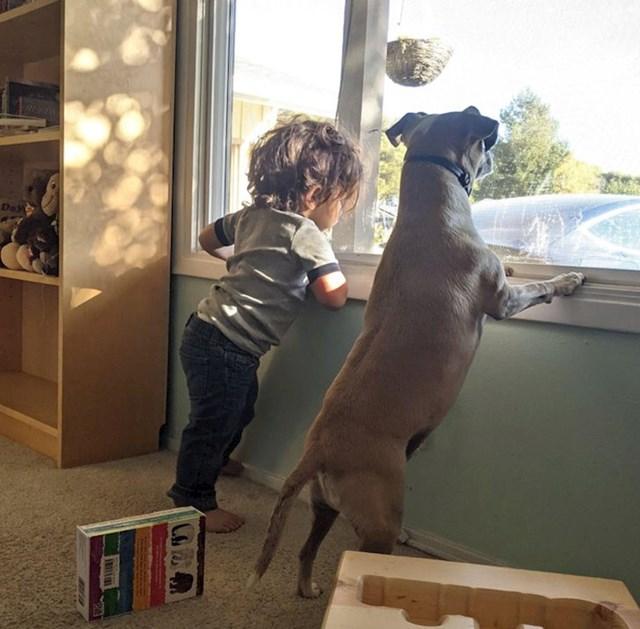 "20. ""Bojao sam se kako će se moj pas i sin slagati, ali strah je bio totalno neopravdan!"""