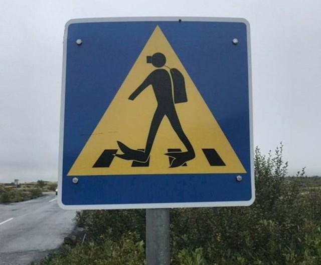 9. Stvarno neobičan znak na koji je netko naišao tijekom vožnje.🧐