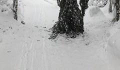 Čovjek je skijajući kroz šumu naišao na jezivu pojavu, protrnuo je od straha