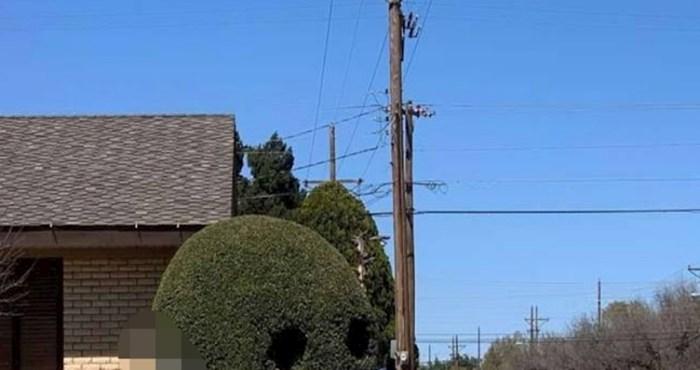 Netko je čak i grm ispred svoje kuće pokušao zaštititi od koronavirusa
