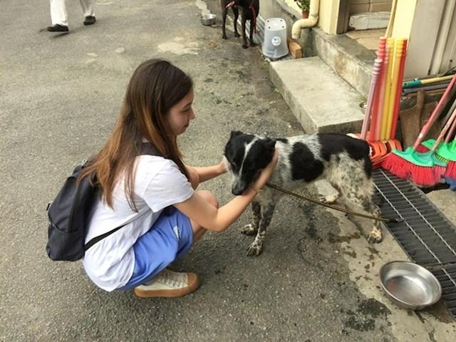 """15. """"Moja najstarija kći pitala je možemo li svakog vikenda ovog ljeta volontirati u lokalnom prihvatilištu za životinje. Nije loša ideja! """""""