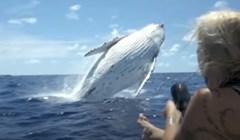 VIDEO Kamera je zabilježila nevjerojatne susrete fotografa i divljih životinja