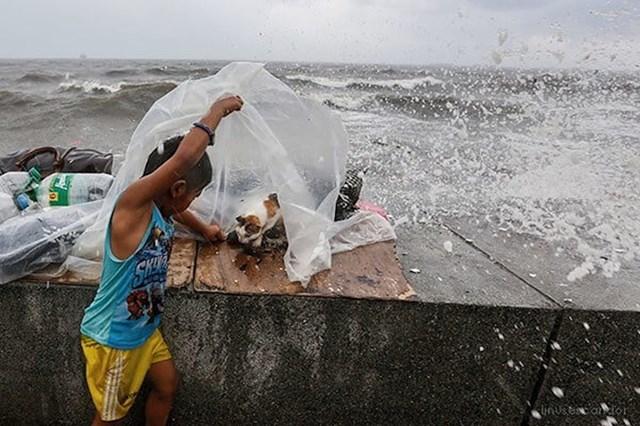 3. Dječak s Filipina štiti mačku koja za vrijeme strašnog tajfuna prolazi kroz okot.