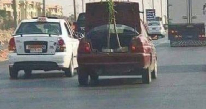 Kad vidite što ovaj tip prevozi pojavit će vam se upitnici nad glavom