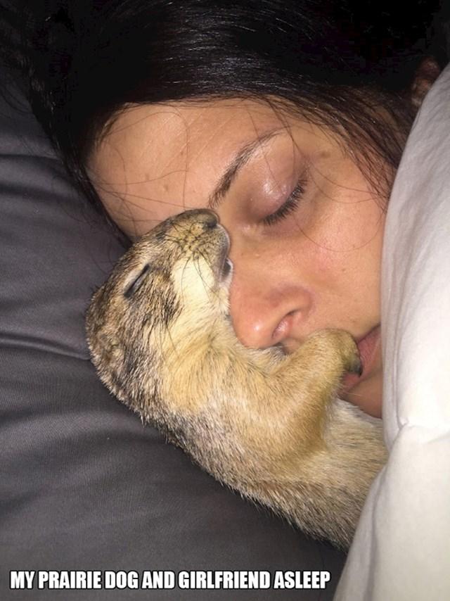 5. Moja cura i prerijski pas spavaju zajedno.