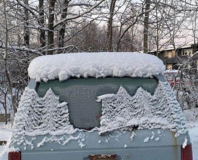 Snijeg se otapa tako da je formirao malu šumu na staklu automobila.