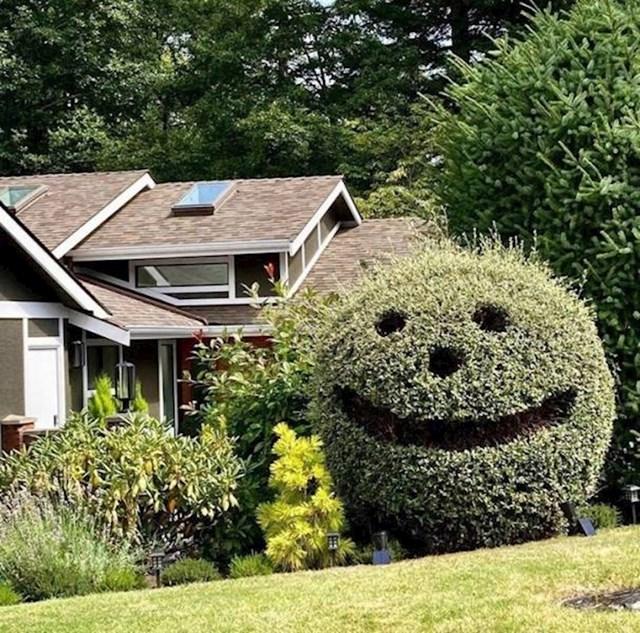 3. Teško je ne nasmijati se kad u jutarnjoj šetnji primjetite ovakav grm.😄