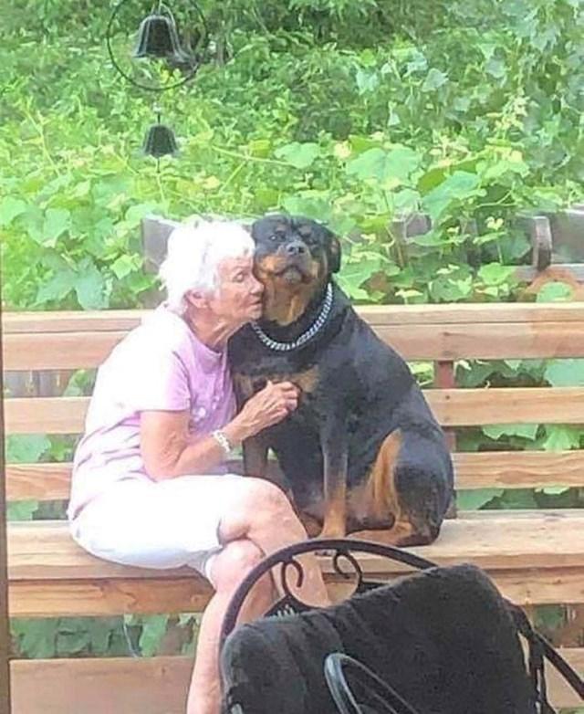 16. Poseban trenutak između psa i bakice.