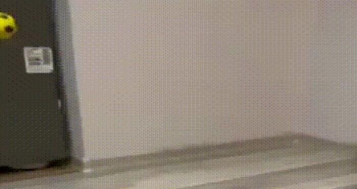 Nespretni mačić koji pokušava uloviti lopticu je nešto najslađe što ćete danas vidjeti