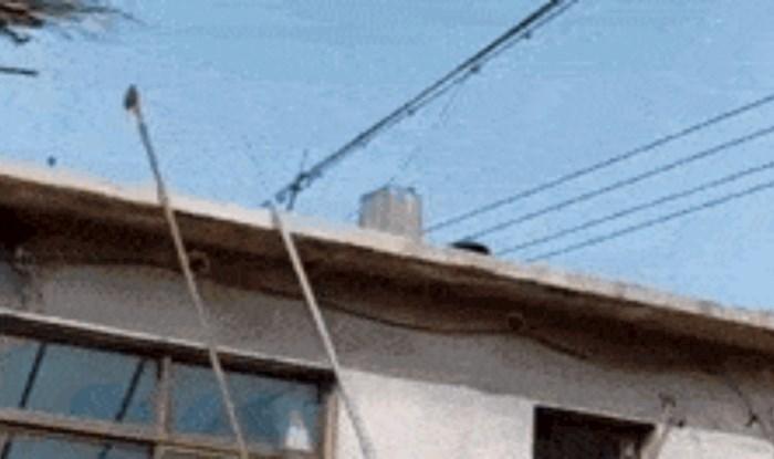 Nećete vjerovati kad vidite pomoću čega se ovaj radnik spustio s krova kao niz tobogan