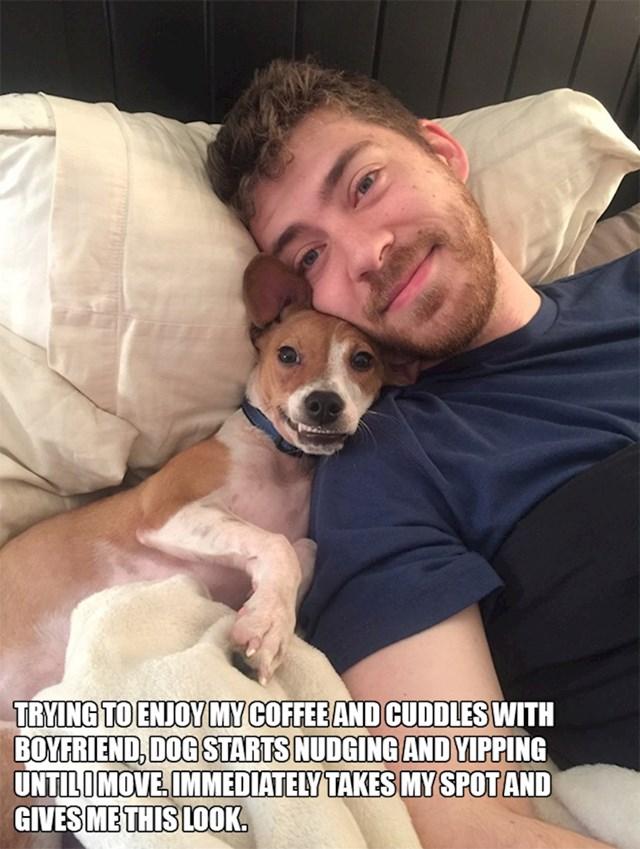2. Pokušavala sam uživati u kavi i maženju s dečkom kad je došao pas i počeo me gurkati. Čim sam se makla zauzeo je moje mjesto i uputio mi ovaj pogled.